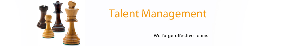 talent management banner